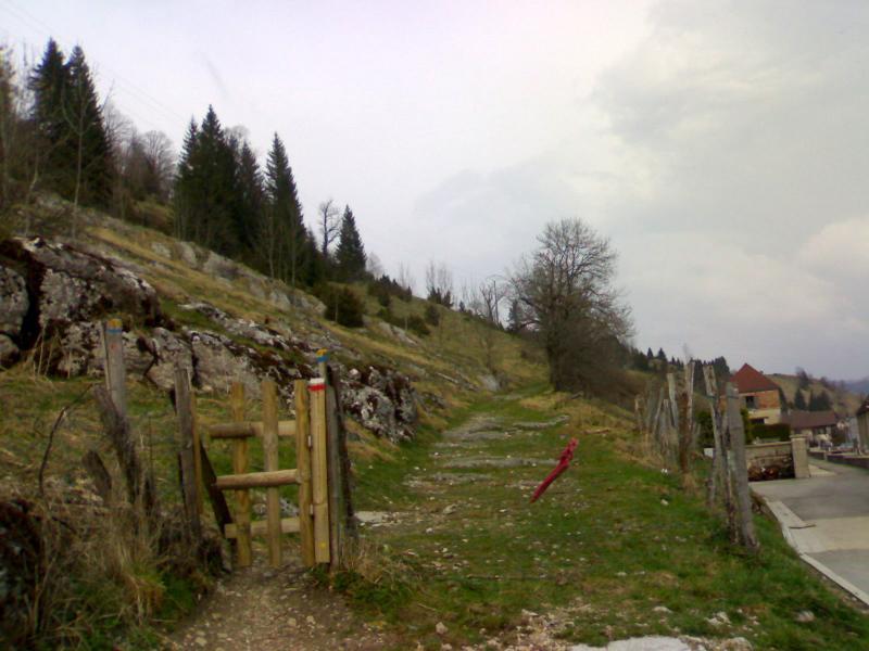 La Cluse-et-Mijoux - Grand Taureau